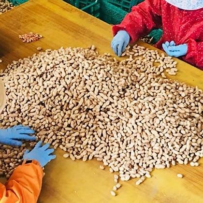 ピーナッツペースト AGRIA 2個セット