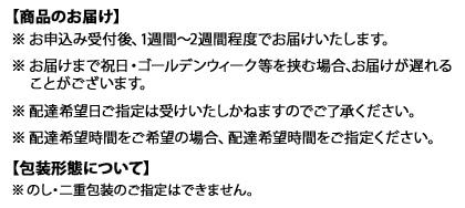 添島勲商店 足腰枕(刺し子柄)