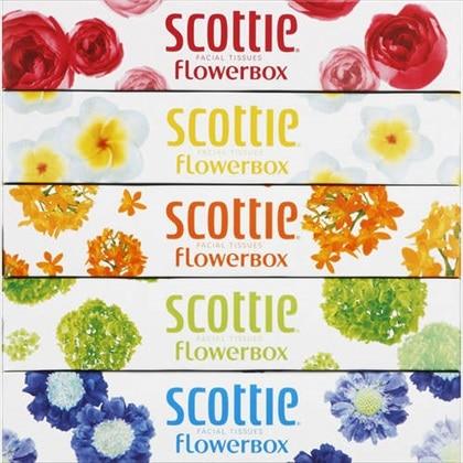 スコッティ ティシュー フラワーボックス 320枚(160組)×5箱