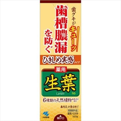 薬用ハミガキ ひきしめ生葉 100g