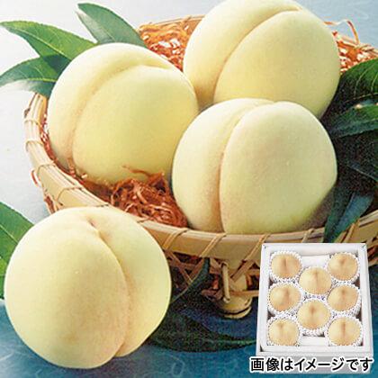 岡山白桃 1.8kg