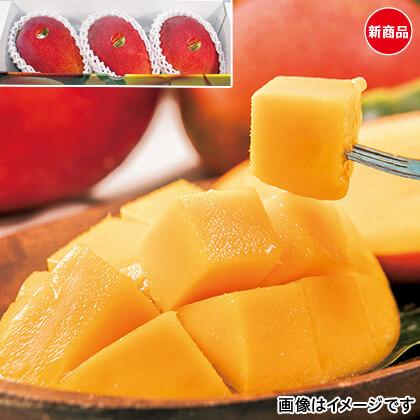 沖縄完熟マンゴー 800g