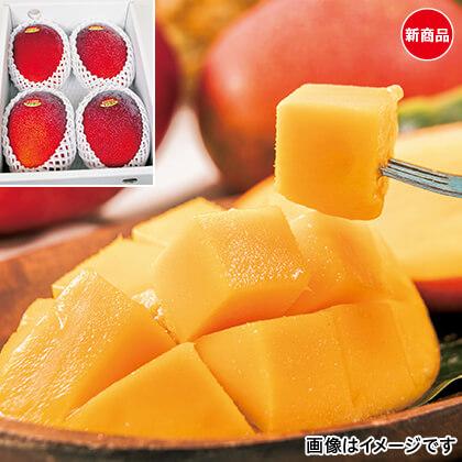 沖縄完熟マンゴー 1.5kg