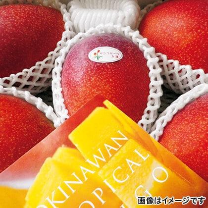 沖縄マンゴー 2kg