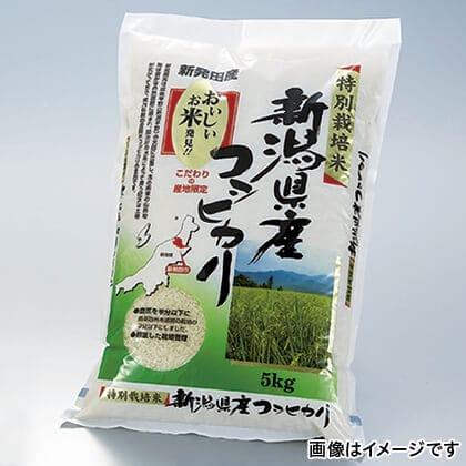 特別栽培米新潟県産コシヒカリ