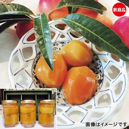 ミニマンゴー 稚雫(ちび)