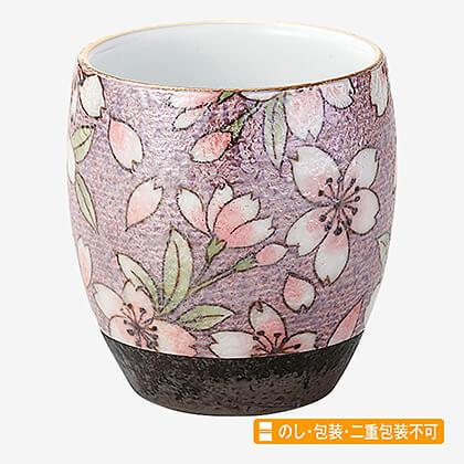 風舞花 茶湯器 有田焼 桜ろまん
