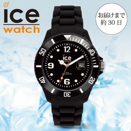 〈ICE−WATCH〉ICE Forever(ブラック)