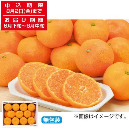 佐賀県産 ハウスみかん 2.4kg