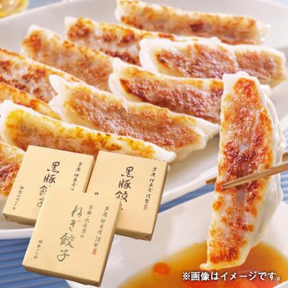 黒豚餃子と九条葱餃子セットB