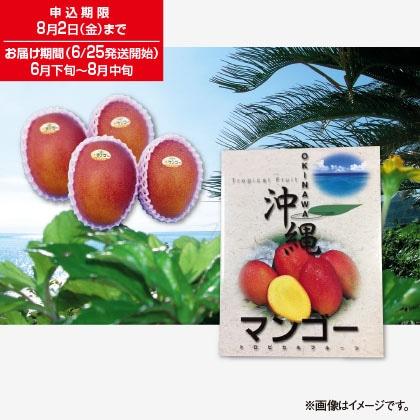 マンゴー 1.5kg