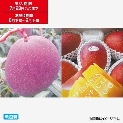 沖縄マンゴー 1kg