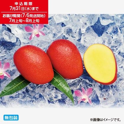 沖縄やんばるマンゴー 1kg