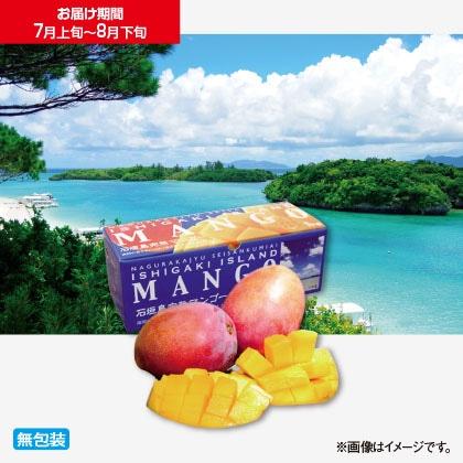 石垣島完熟マンゴー 1kg