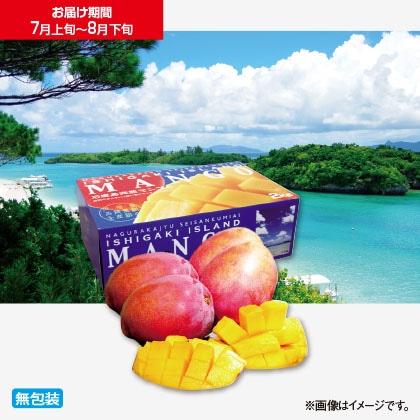 石垣島完熟マンゴー 2kg