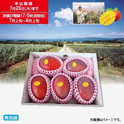 紅福姫マンゴー 1.8kg
