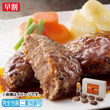 国産肉のデミグラスソースハンバーグ(6個)