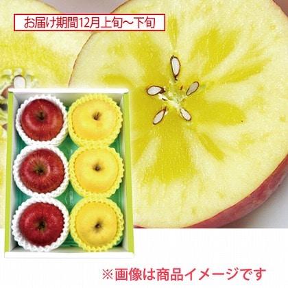 岩手 蜜入りサンふじりんご&純情りんご 蜜入り冬恋