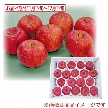 青森県産 サンふじりんご