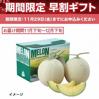 熊本県産 マスクメロン
