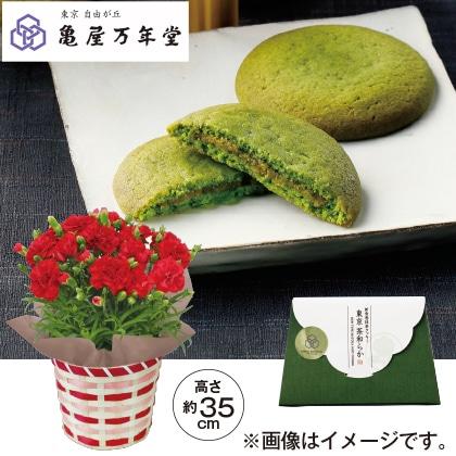 赤のカーネーション&亀屋万年堂 東京 茶和らか