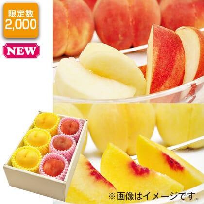 長野県産 白桃&黄桃