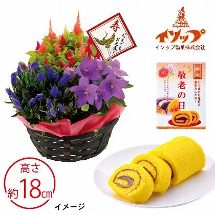 秋の3種花かごと安納芋ロールケーキセット