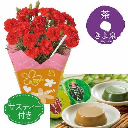 カーネーション4号鉢と抹茶プリンセット