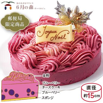 6月の森クリスマスケーキ ベリースター