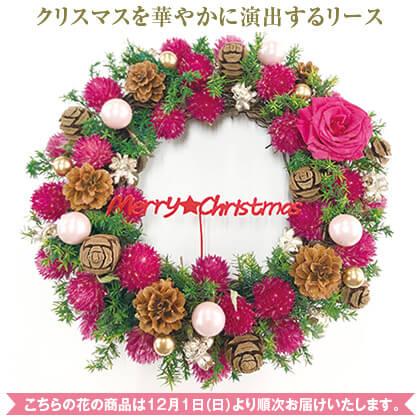 ドライフラワー「クリスマスリース」