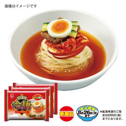 もりおか冷麺6食セット