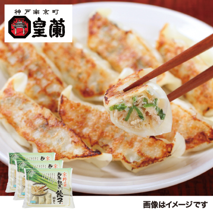神戸南京町「皇蘭」九条ねぎ餃子