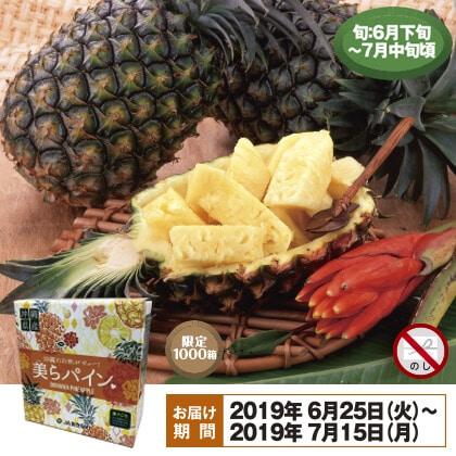 沖縄のパインアップル2.4kg 2個