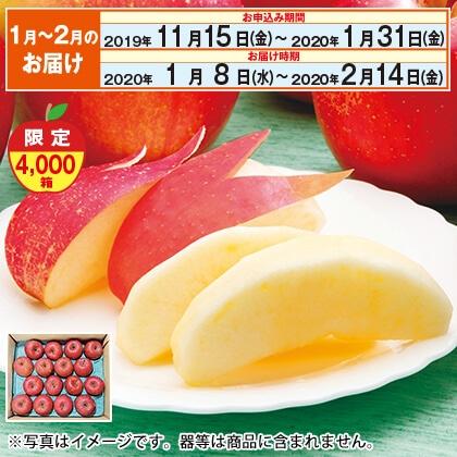 お買い得サンふじC(1月〜2月のお届け)
