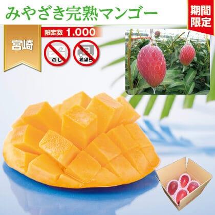 わけありマンゴー