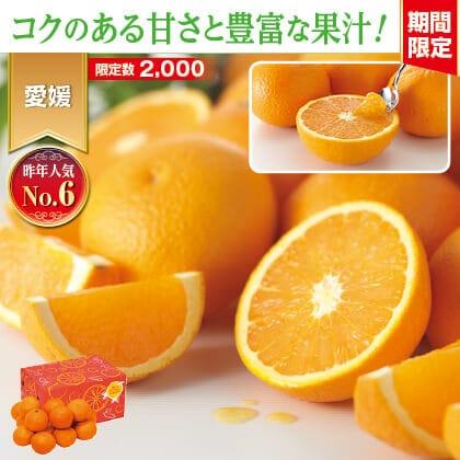 ワケあり清見タンゴール 3kg(バラ詰め)