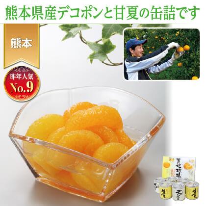 芦北柑橘(6缶入)