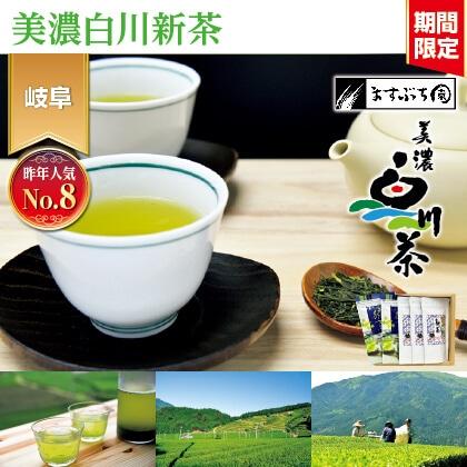新茶ティーバッグと水出し緑茶ティーバッグ