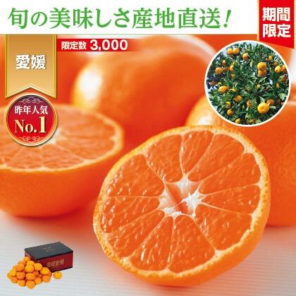 愛媛みかん 3kg 家庭用(バラ詰)