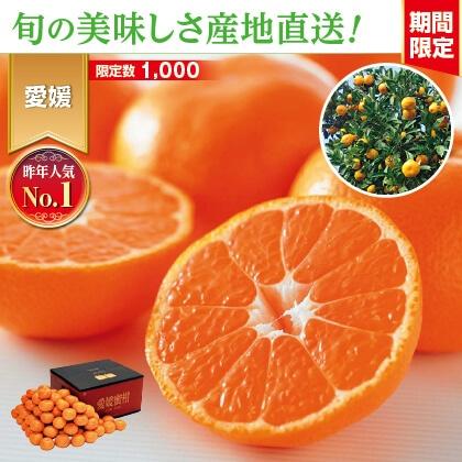 愛媛みかん 9kg 家庭用(バラ詰)