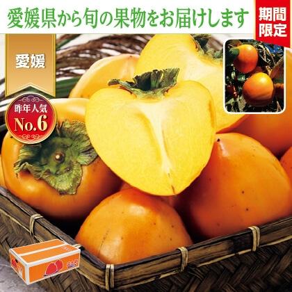 富士柿 4kg
