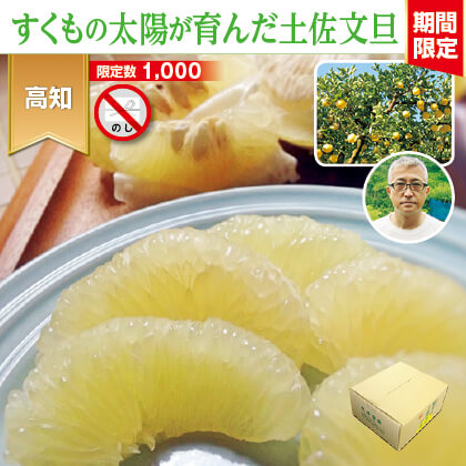 土佐文旦 3.5kg(家庭用)