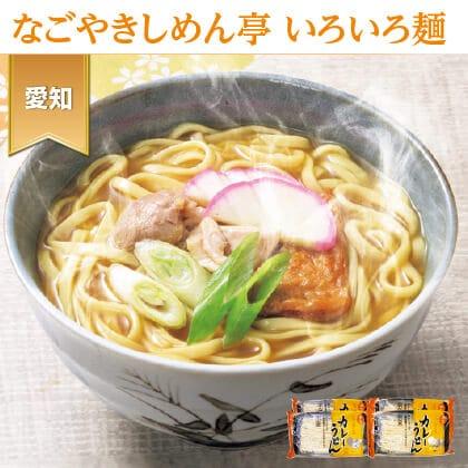 半生 名古屋カレーうどん(8食)