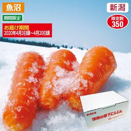 津南産雪下にんじん 4kg