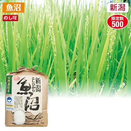 魚沼コシヒカリ特別栽培米5kg 2018年産米1