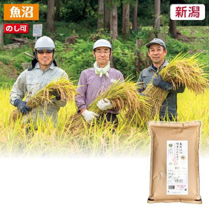 北魚沼コシヒカリ(玄米)5kg 2019年産玄米