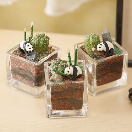 植物と一緒に楽しむジオラマ「竹林のパンダ達」ミニ3個入