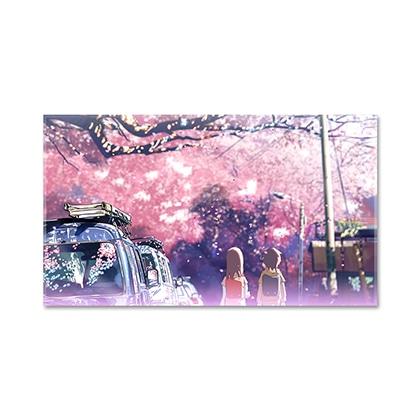 新海誠作品 Still Photography Collection 秒速5センチメートル TypeA