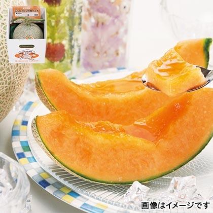 富良野メロン 1.6kg(1個)