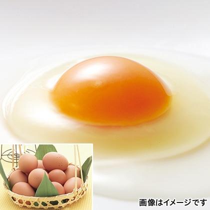 蔵王地養卵
